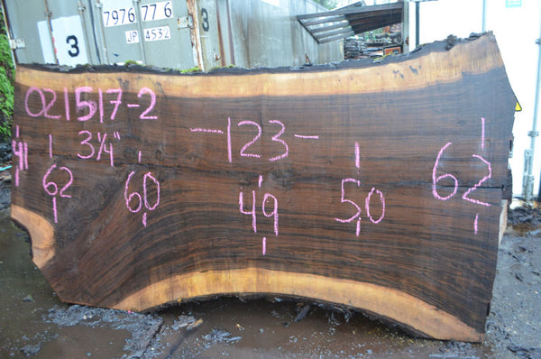 Oregon Black Walnut Slab 021517-02