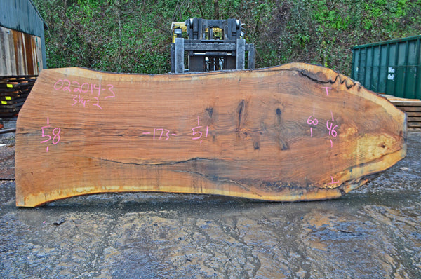 Oregon Red Oak Slab 022014-03