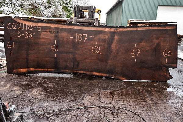 Oregon Black Walnut Slab 022118-05