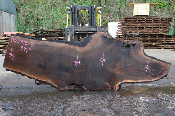 Oregon Black Walnut Slab 022315-08