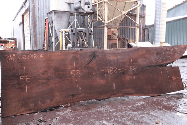 Oregon Black Walnut Slab 022318-04