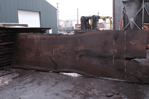 Oregon Black Walnut Slab 022318-05