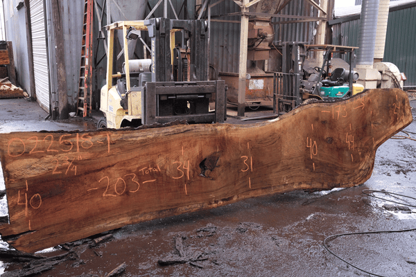 Oregon White Oak Slab 022518-01