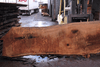 Oregon White Oak Slab 022518-03