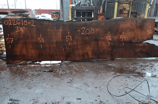 Oregon Black Walnut Slab 022618-02