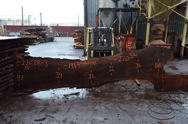 Oregon Black Walnut Slab 022618-03