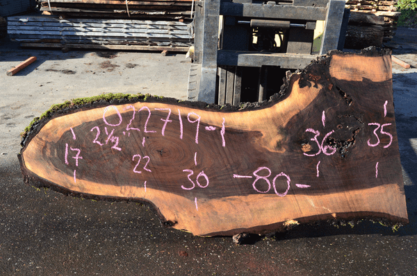 022719-01 Oregon Black Walnut Slab