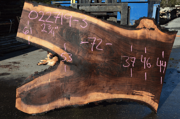 022719-03 Oregon Black Walnut Slab