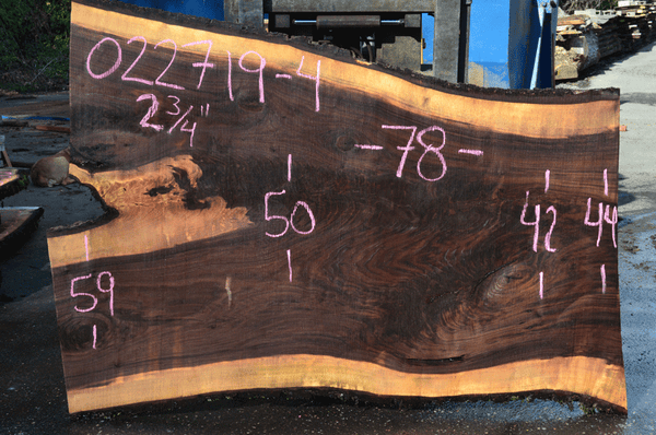 022719-04 Oregon Black Walnut Slab