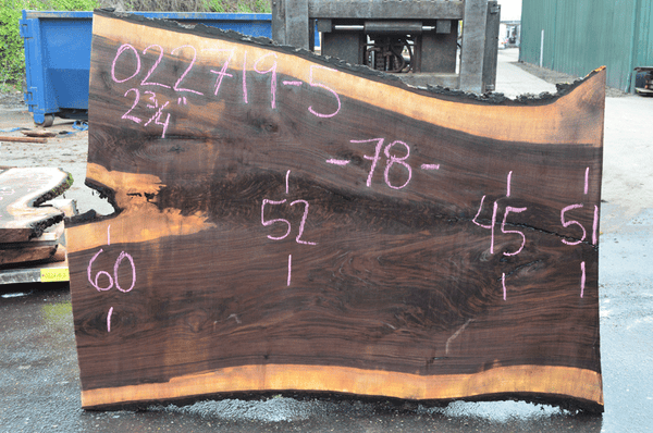 022719-05 Oregon Black Walnut Slab