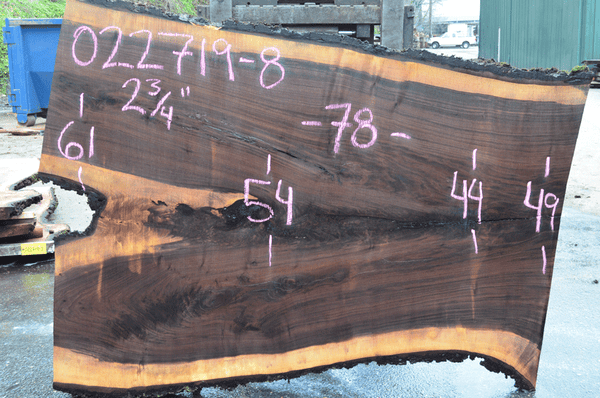 022719-08 Oregon Black Walnut Slab