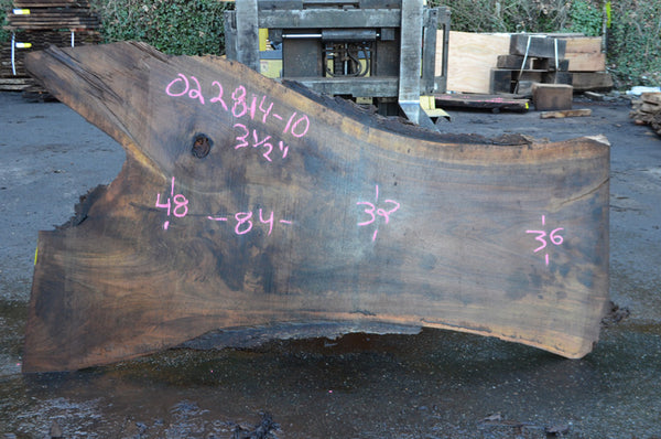 Oregon Black Walnut Slab 022814-10