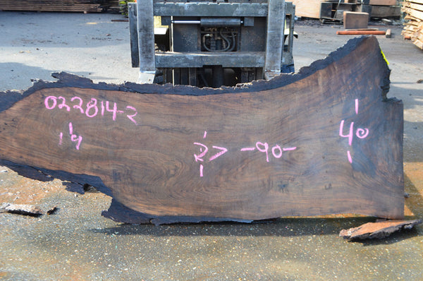 Oregon Black Walnut Slab 022814-02