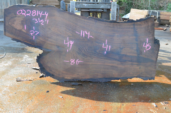 Oregon Black Walnut Slab 022814-04