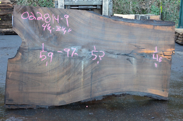 Oregon Black Walnut Slab 022814-09