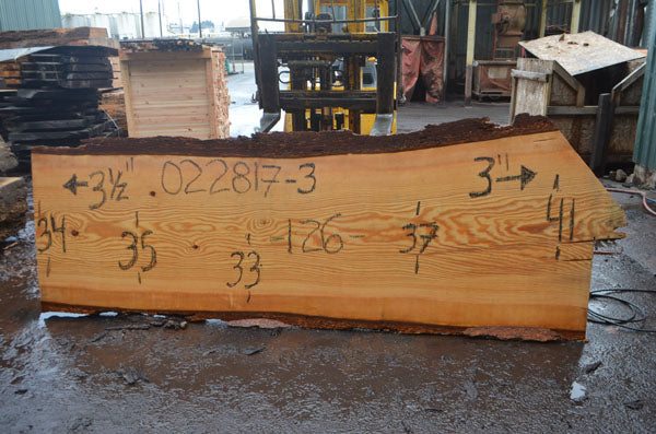 Oregon Fir Slab 022817-03