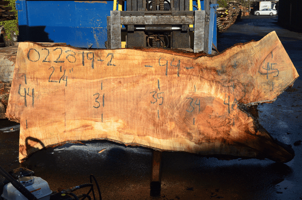 022819-02 Big Leaf Maple Slab