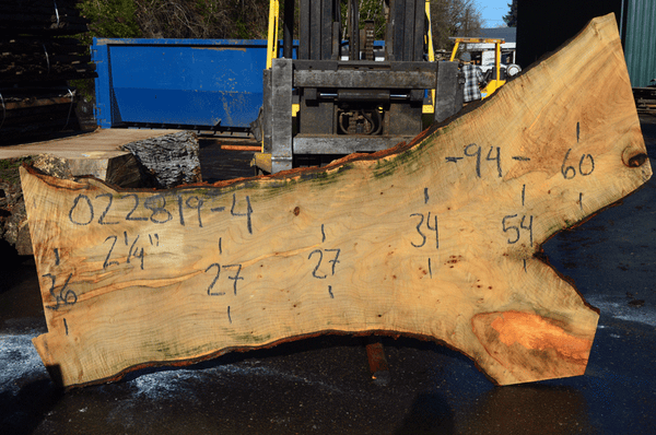 022819-04 Big Leaf Maple Slab