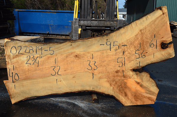 022819-05 Big Leaf Maple Slab