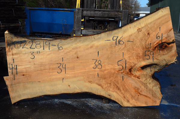 022819-06 Big Leaf Maple Slab
