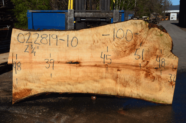 022819-10 Big Leaf Maple Slab