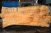022819-11 Big Leaf Maple Slab