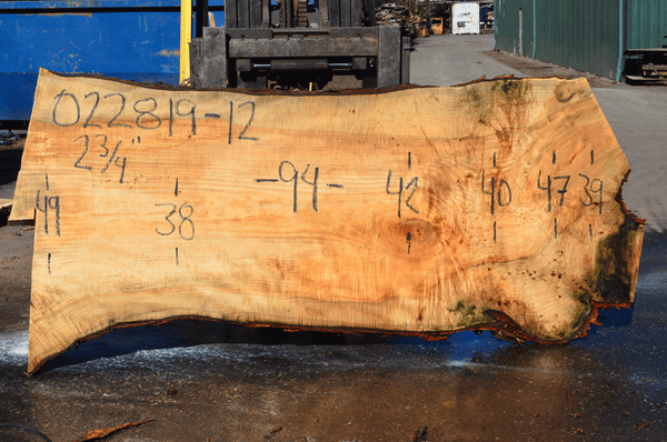 022819-12 Big Leaf Maple Slab