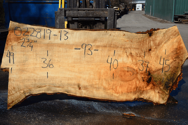 022819-13 Big Leaf Maple Slab