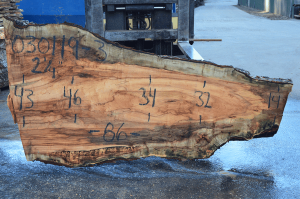 030119-03 Big Leaf Maple Slab