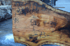 030119-05 Big Leaf Maple Slab