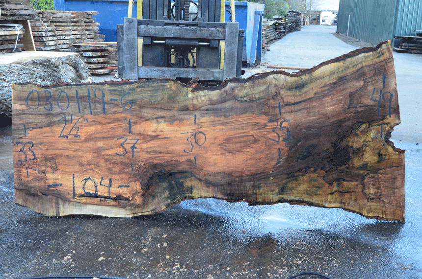 030119-06 Big Leaf Maple Slab