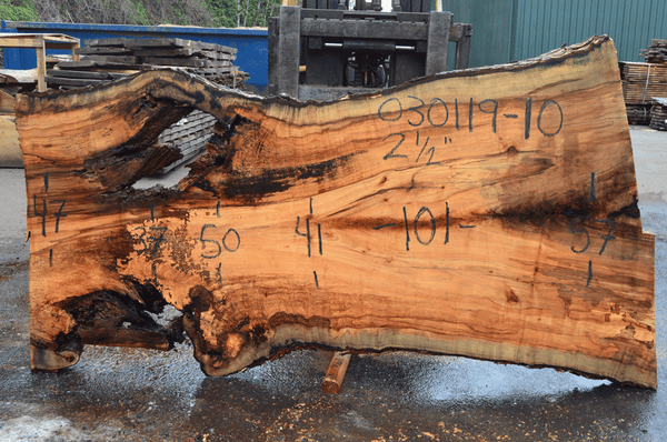 030119-10 Big Leaf Maple Slab
