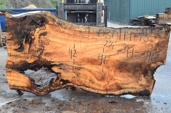 030119-13 Big Leaf Maple Slab
