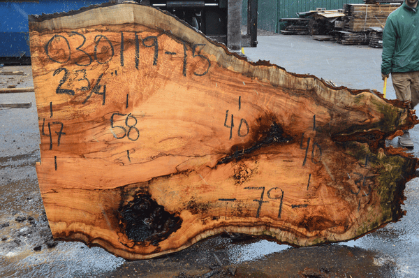 030119-15 Big Leaf Maple Slab