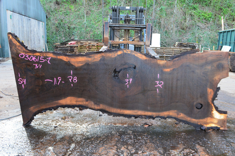 Oregon Black Walnut Slab 030615-01