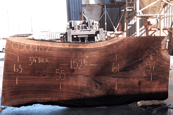 Oregon Black Walnut 030618-02