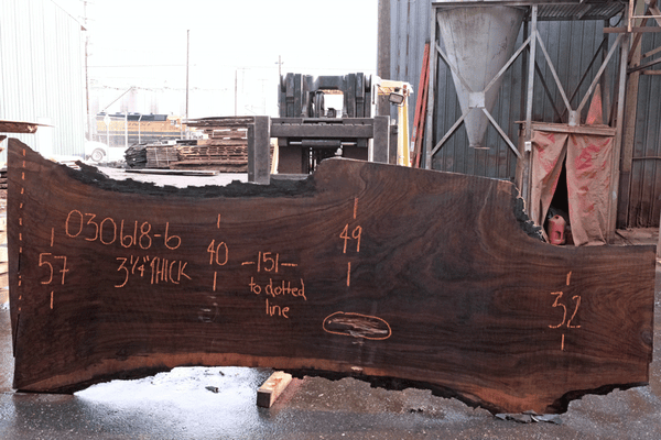 Oregon Black Walnut 030618-06