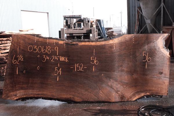 Oregon Black Walnut 030618-09