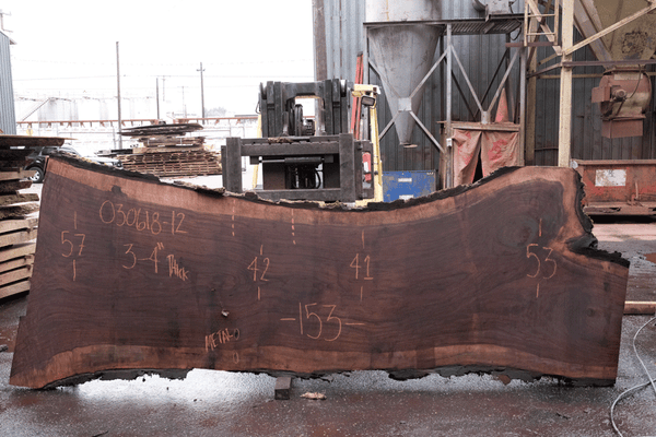 Oregon Black Walnut 030618-12