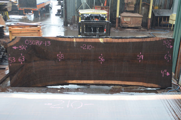 Oregon Black Walnut Slab 030717-13