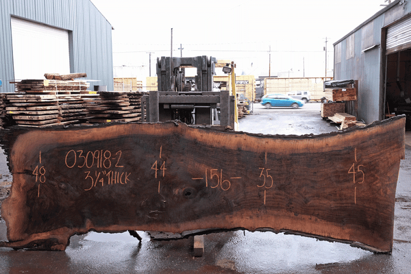Oregon Black Walnut 030918-02