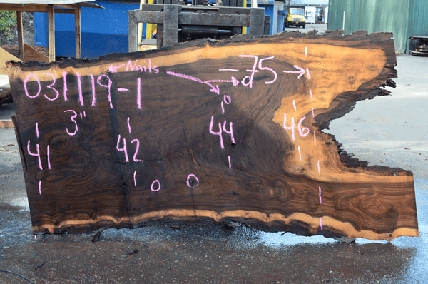 031119-01 Oregon Black Walnut Slab