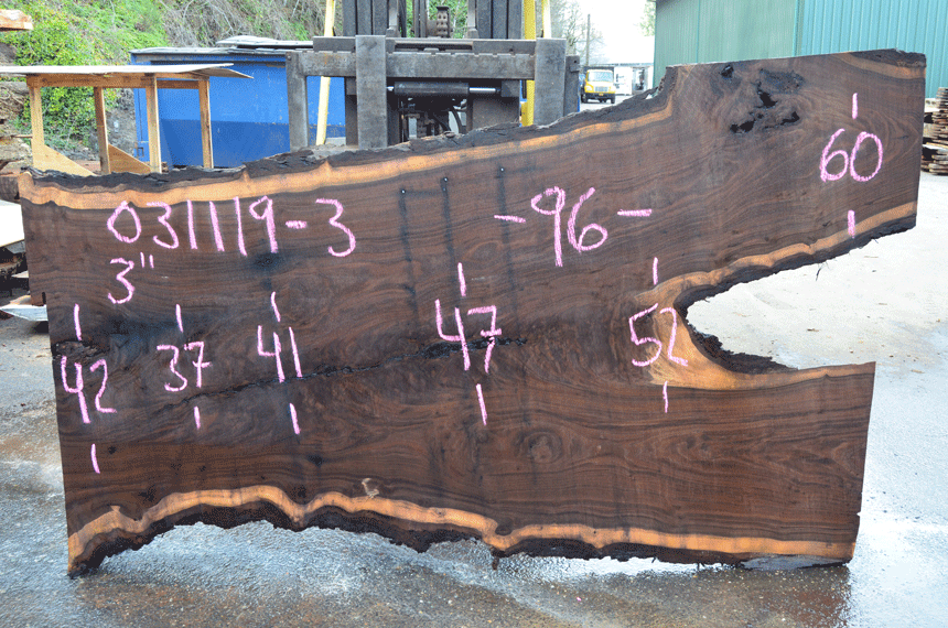 031119-03 Oregon Black Walnut Slab