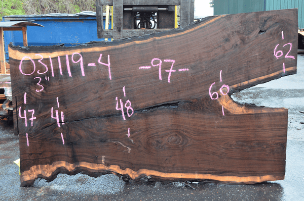 031119-04 Oregon Black Walnut Slab