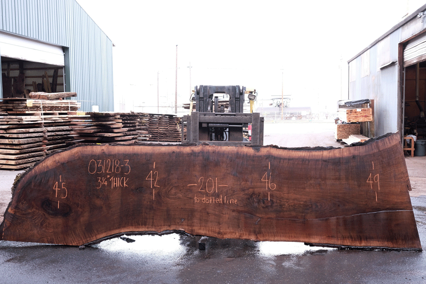 Oregon Black Walnut 031218-03