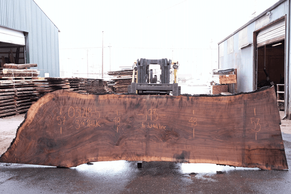Oregon Black Walnut 031218-05