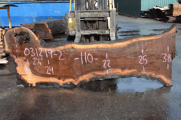 031219-02 Oregon Black Walnut Slab