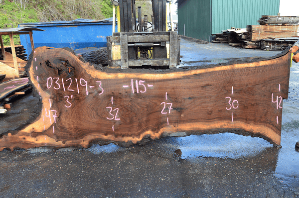 031219-03 Oregon Black Walnut Slab