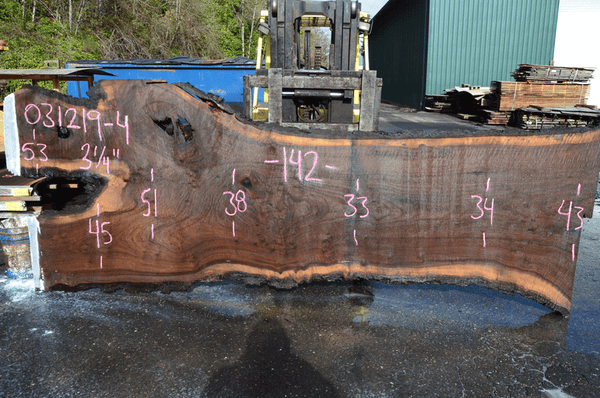 031219-04 Oregon Black Walnut Slab