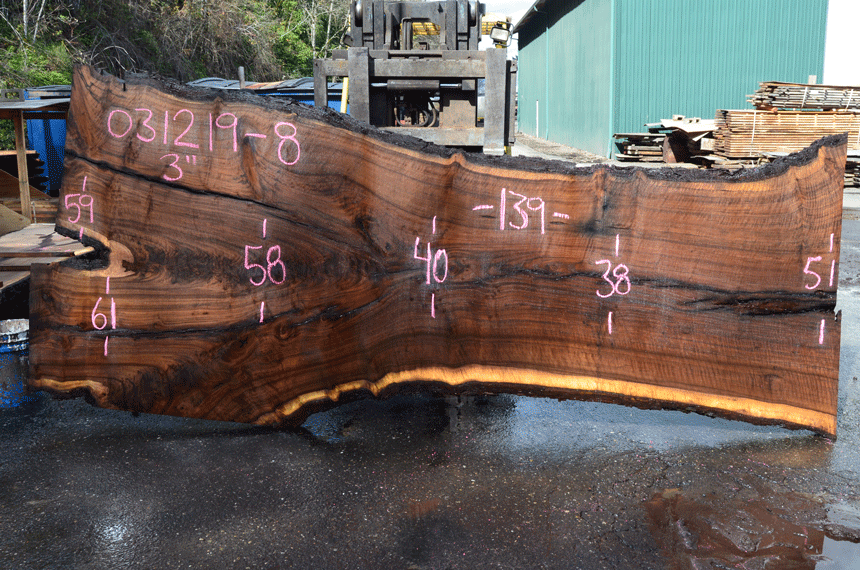 031219-08 Oregon Black Walnut Slab